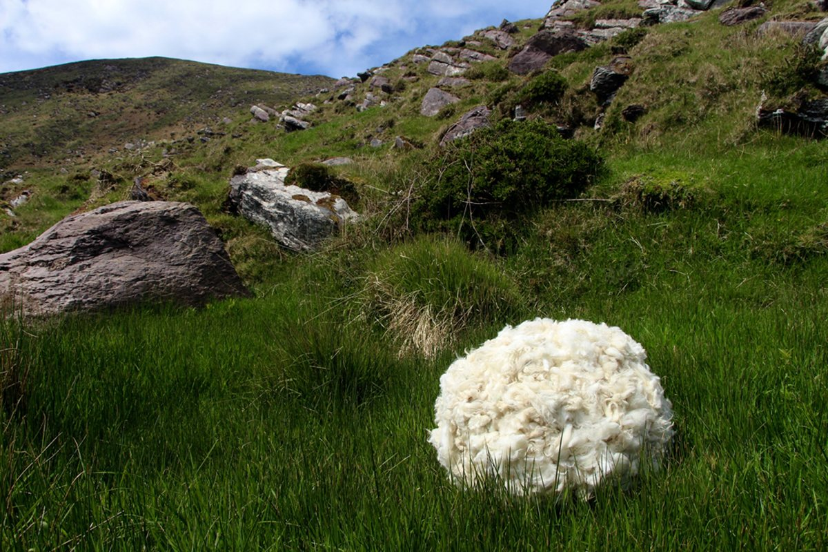 Rural Irish Pallet: Wool is found on every fence post and bush in rural Ireland. It naturally becomes a part of the color pallet of the landscape. A ball of wool gathered from all the bits of wool found in the landscape could almost make a new sheep.