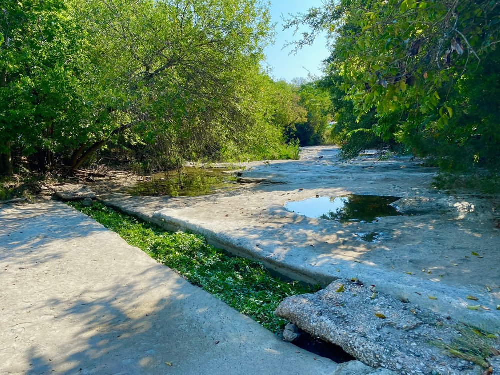 Natural Healing: A human made wound in a limestone creek bed is healed naturally and conceptually with Carolina Jasmine fronds.